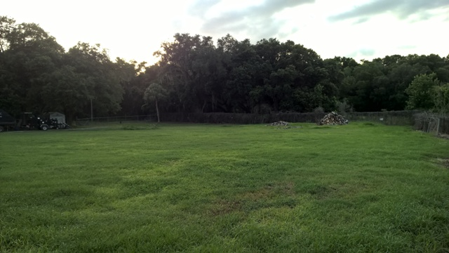 1.6 acre site of our new home